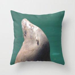 Californian Sea lion Throw Pillow