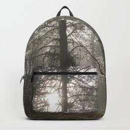 Calm morning... Into the foggy woods Backpack