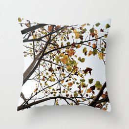 44     Plants Photography   200630   Throw Pillow
