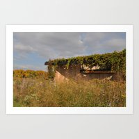 Wooden Building Surrounded by Flowers Art Print