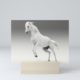 white horse Mini Art Print