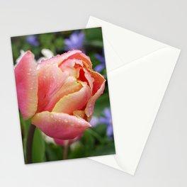 Tulip with soft orange colors I Dewdrops I Love I Photography I Fine art Stationery Cards