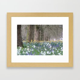 Flower Field of Blarney Framed Art Print