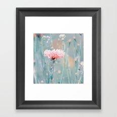 Pink pastel cornflower Framed Art Print