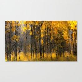 Golden Aspens, Colorado Canvas Print