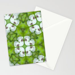 Silky Camellia Stationery Cards