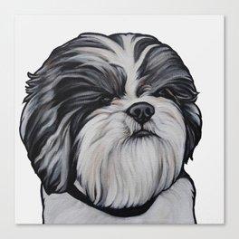 Herbie the Shih Tzu - White Background Canvas Print