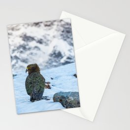 Kea parrot bird in the snow mountains of New Zealand Stationery Cards