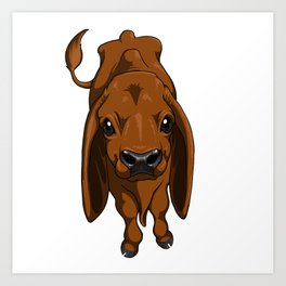 Brown Brahman calf Art Print