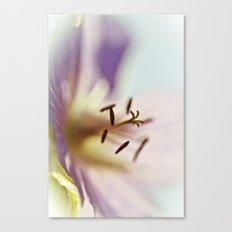 Lilac Blues Canvas Print