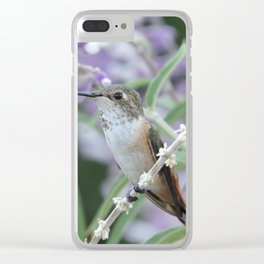 Ms. Hummingbird's Break Time in Mexican Sage Clear iPhone Case