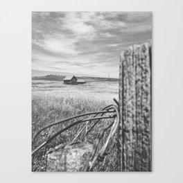 Isolate Canvas Print