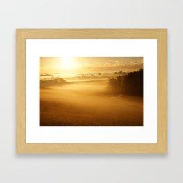 Sunlit Morning Framed Art Print