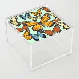 Mariposas- Butterflies Acrylic Box