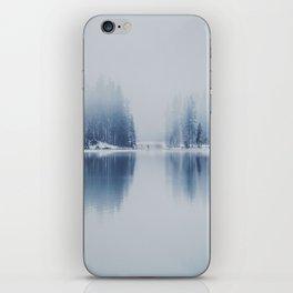 frozen world iPhone Skin