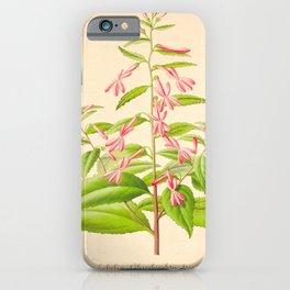Lobelia Ghiesbreghtii Vintage Botanical Floral Flower Plant Scientific Illustration iPhone Case