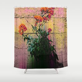 Grown from the Gutter to the Stars Shower Curtain
