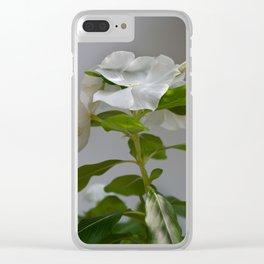 WHITE VINCA Clear iPhone Case
