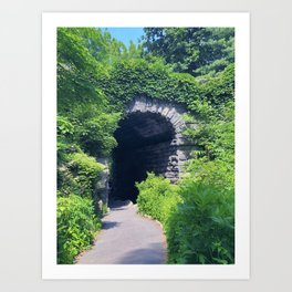 secret garden tunnel Art Print