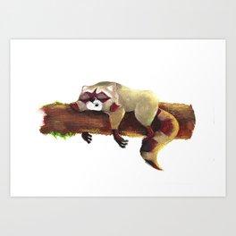Sleeping Raccoon Art Print