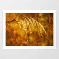Abstract seed Art Print