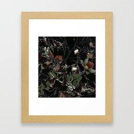 Exotic Botani Framed Art Print