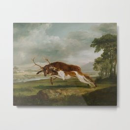 George Stubbs - Hound Coursing a Stag Metal Print