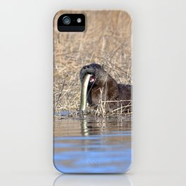 Watercolor Otter 09, Janes Island, Maryland iPhone Case