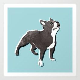 Boston Terrier 2 Art Print