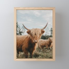 Highland Cow In The Country Framed Mini Art Print