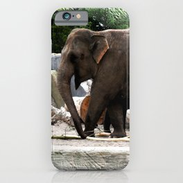 Friends at the zoo V iPhone Case