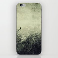 Talk to me ~ Birds silhouettes iPhone & iPod Skin