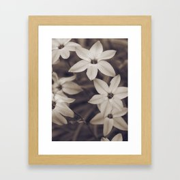Coffee Stained Flowers Framed Art Print