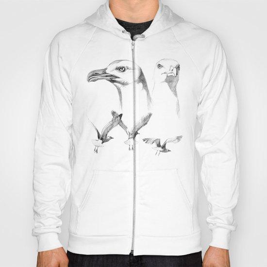 Great Black-backed Gull - Larus marinus   SK043 Hoody