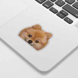 Pomeranian Dog illustration original painting print Sticker
