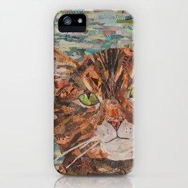 cat on aqua background iPhone Case