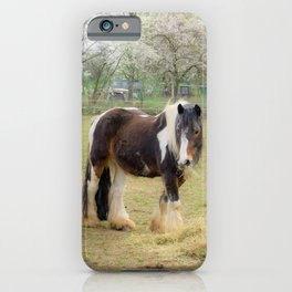 Horse love iPhone Case