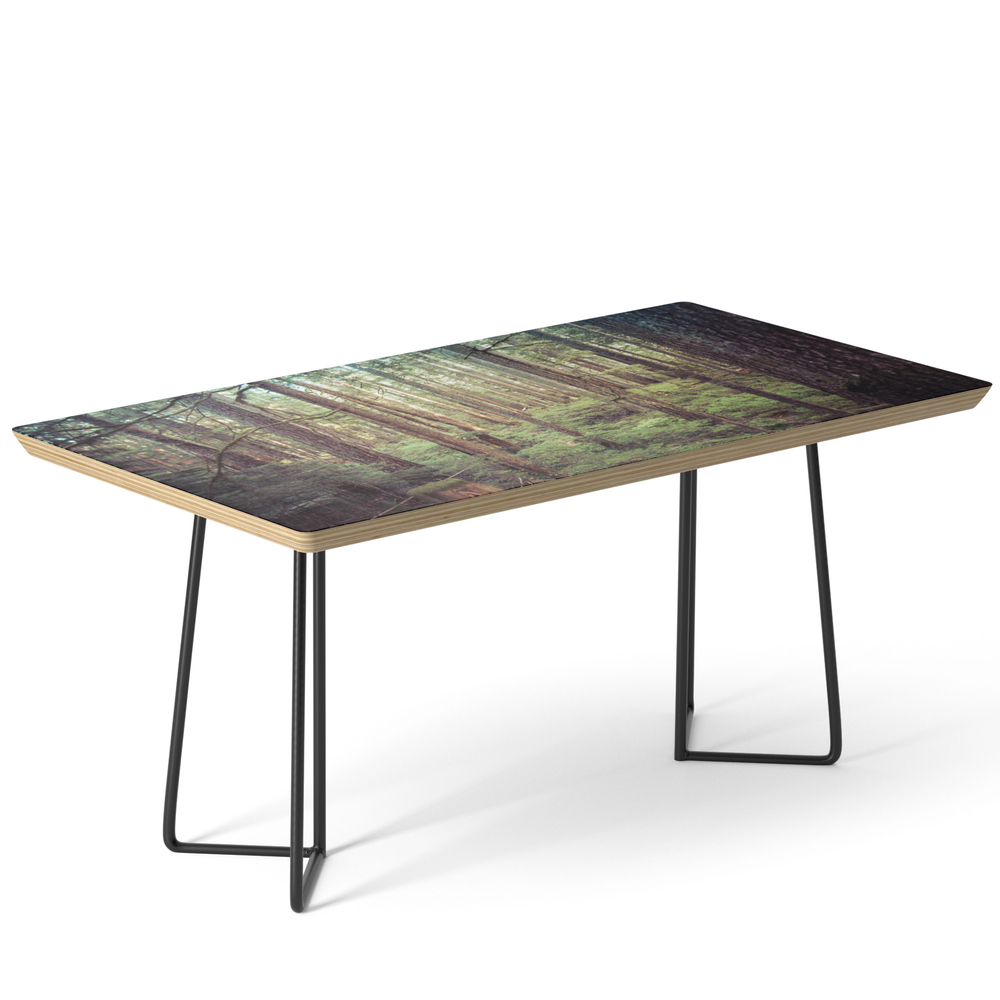 Outdoor Adventure Coffee Table by cascadia