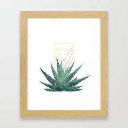 Succulent geometric Framed Art Print