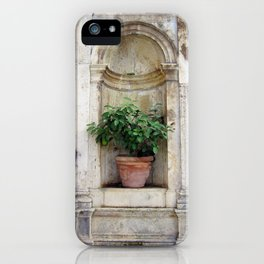 Urn with Lemon Tree iPhone Case