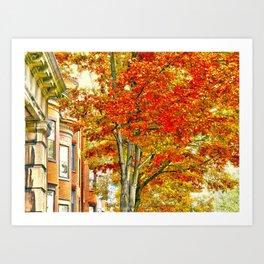 South End. Fall in Boston, MA.  Art Print