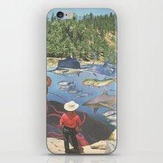 Big River Blues iPhone & iPod Skin