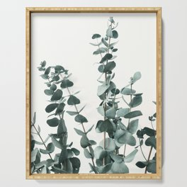 Eucalyptus Leaves Serving Tray
