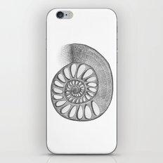 gyre iPhone & iPod Skin