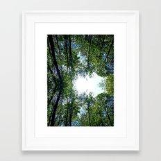 Where the Sky Met the Trees Framed Art Print