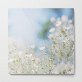 . sweet spring . Metal Print