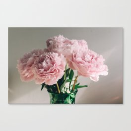Pink Peonies on White Canvas Print