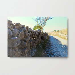 Road to the old Bosnian village of Lukomir Metal Print