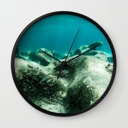 Paysage sous marin / Underwater landscape Wall Clock
