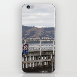 Slow Terns of Akaroa iPhone Skin